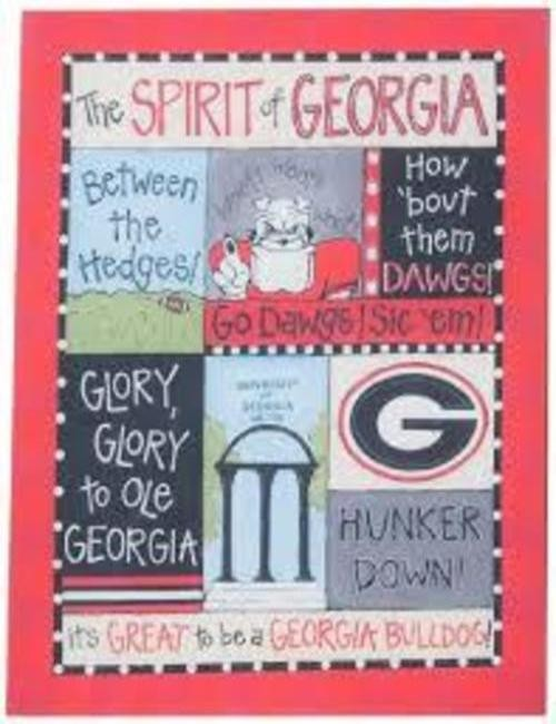 Georgia Bulldogs Spirit Canvas